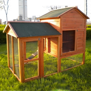 Chicken Coop Prize