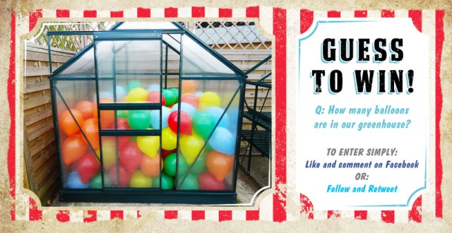 Competition Banner: Greenhouse Filled with Balloons.